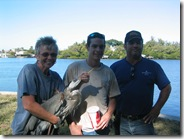 Heron rescued from entangled fish line
