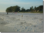 Clean Beaches Anna Maria Island