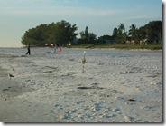 Clean Beaches Anna Maria Island