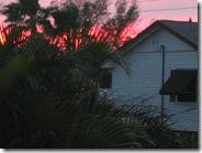 Island Real Estate sunshine