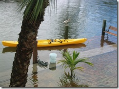 Island flooding