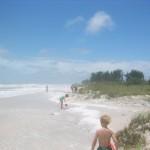 T.S Debby beach erosion