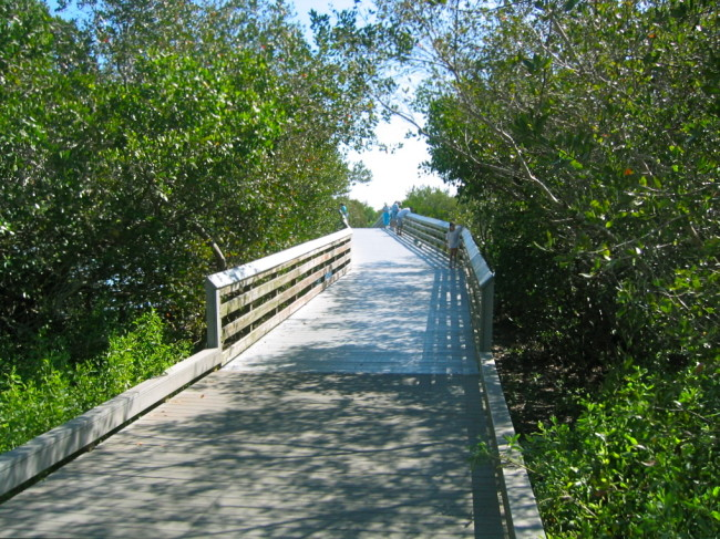 One of many bridges over Robinson Preserve waterways