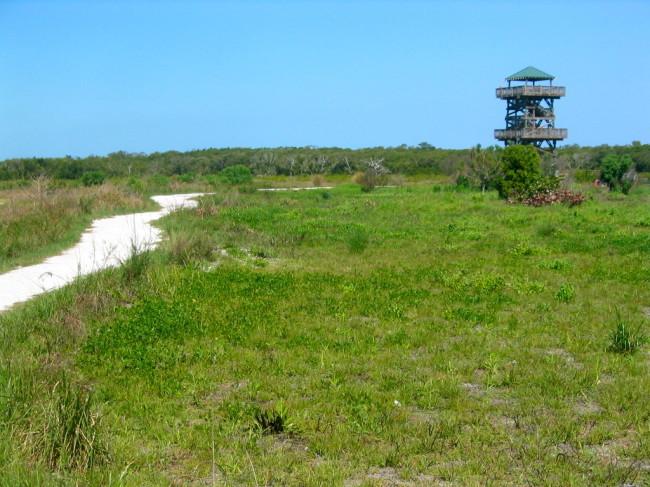 Observation tower loop
